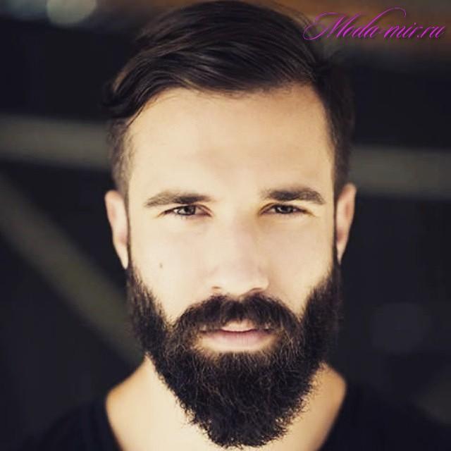 Модная мужская борода 2017 новинки фото
